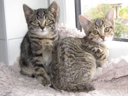 Marius und Mino sind umgezogen!
