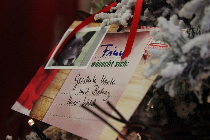 Gelungene Weihnachts-Fressnapf-Aktion!!!