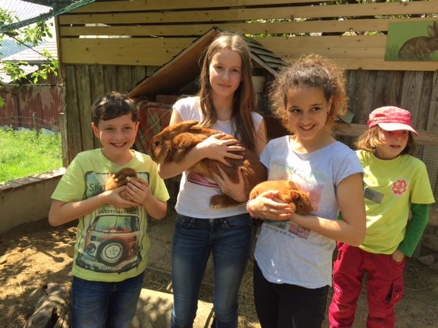 Jugendgruppe zu Besuch auf Biobauernhof