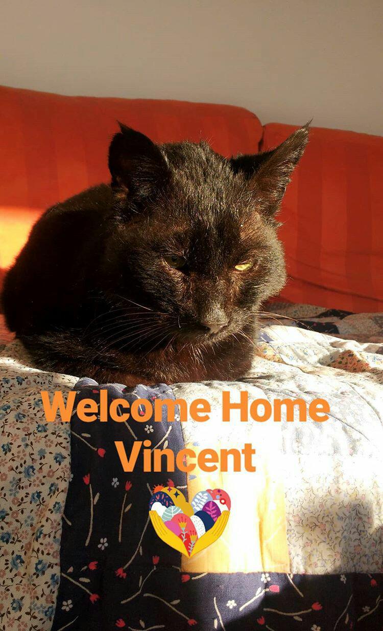 Nachruf für Vincent…
