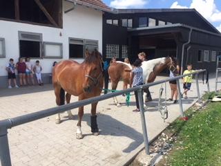 Tierschutzjugend zu Besuch beim Reitverein