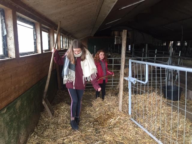 Jugendgruppe erneut zu Besuch auf BioBauernhof in Gengenbach