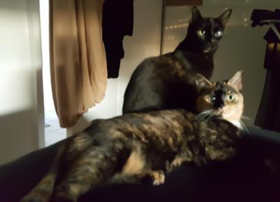Post von Cleopatra und Ciara!