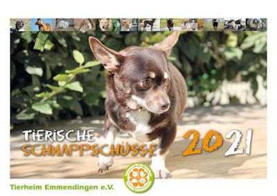 Tierische Schnappschüsse 2021!